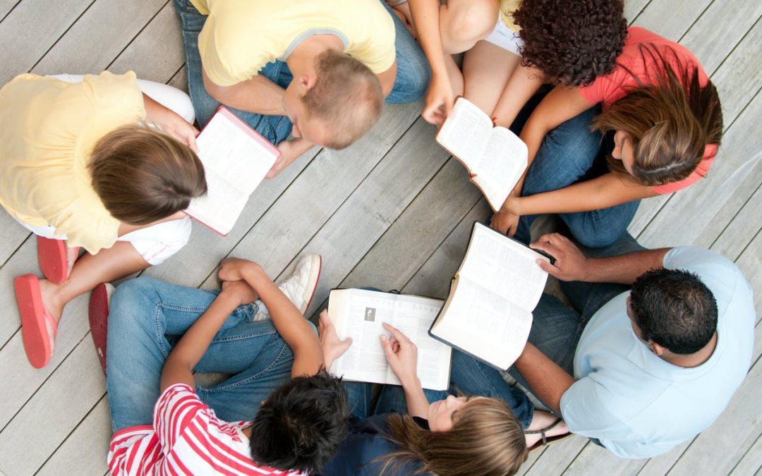 Poziv organizacijama članicama za učešće u programu jačanja kapaciteta